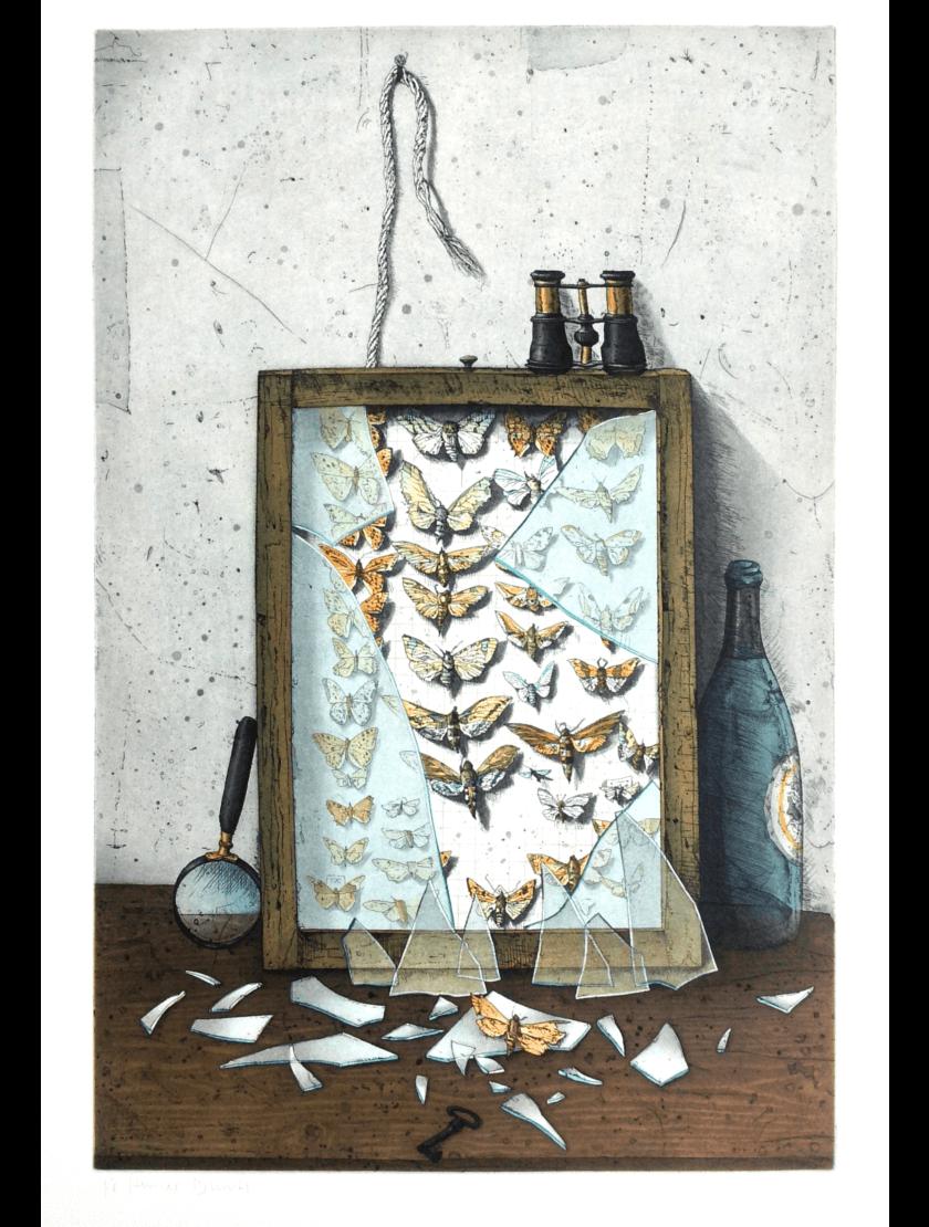 Radierung Kunstwerk. Zerbrochener Kasten mit Schmetterlingen